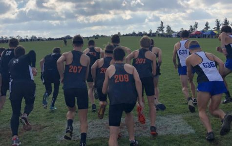 Cross Country Team Competes at Districts