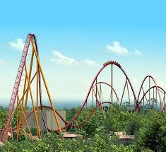 Which Roller Coaster is Best – Diamondback